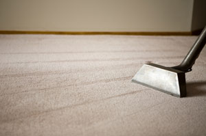 Carpet Cleaning in Ruislip, Watford, Pinner, Ealing, Northwood, Uxbridge, Harrow