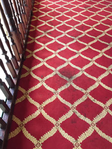 Carpet Stain Removal Buckinghamshire