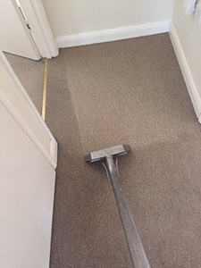 Carpet Cleaner Watford