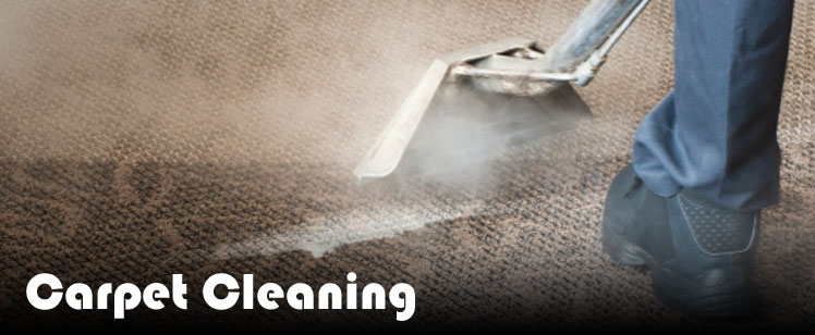 Carpet Cleaning Ruislip, Watford, Pinner, Ealing, Northwood, Uxbridge, Harrow